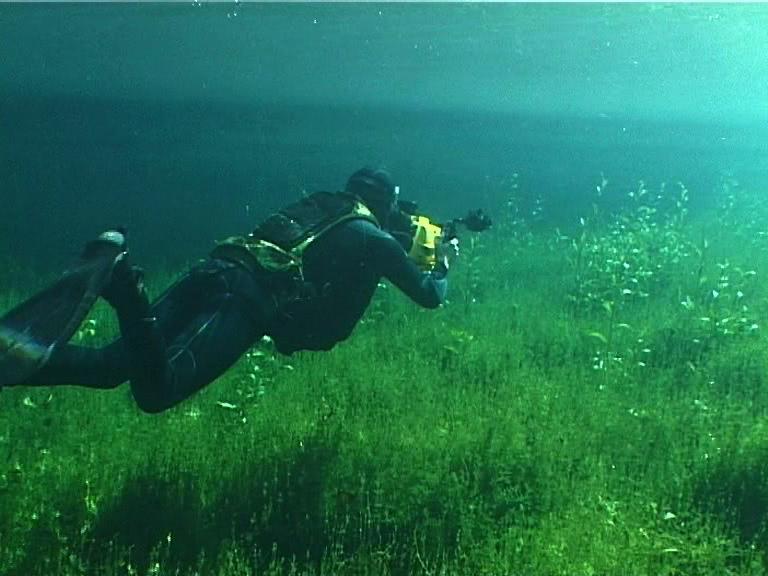 Sous l'eau, les pieds sur terre